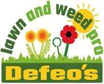 DEFEO'S LAWN AND WEED PRO